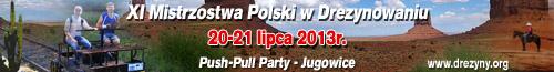 """XI edycja Mistrzostw Polski w  Drezynowaniu """"Push-Pull Party"""""""