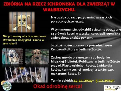 Zbiórka na rzecz schroniska dla zwierząt w Wałbrzychu