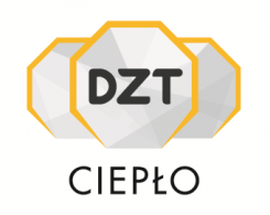 DZT Service