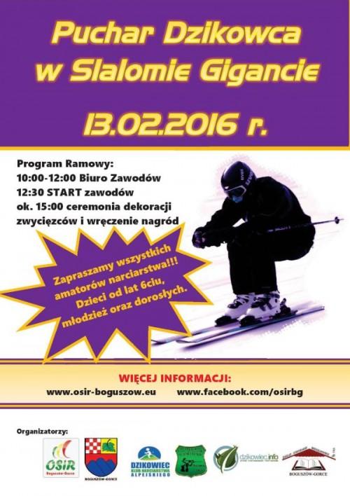 Puchar Dzikowca w slalomie gigancie