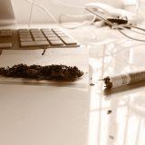 Tytoń do papierosów